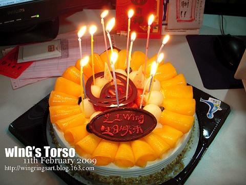2009年2月12日 - ш í л g - wInGs Torso