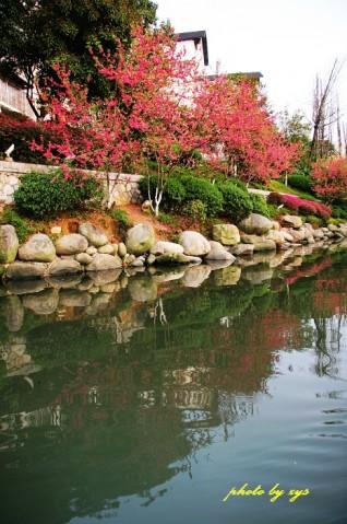[原创]万里迎春24--两江四湖《一落索》 - 自由诗 - 人文历史自然 诗词曲赋杂谈