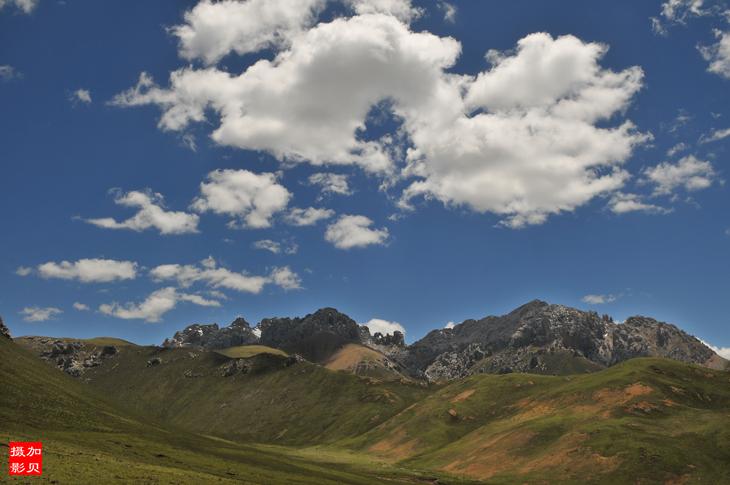 [原摄]六月的巴塘草原(16p) - 加贝先生 - 加贝先生的博客