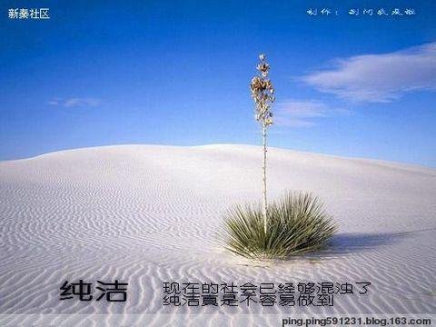 人生不可拒绝的十种意境 - ming - 星晨乐园
