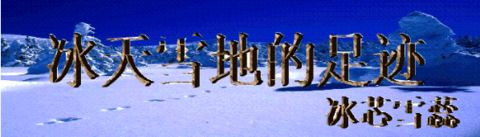 过年随想(原创) - 冰芯雪蕊 - 冰天雪地的足迹