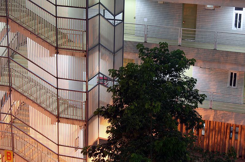 [原创]大学城一角 - 歪树 - 歪树