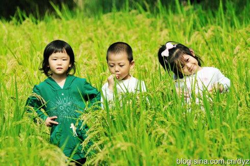 中秋节小长假:这个假日很清闲