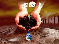 生命 - 雨的印记 - 人之相悉悉于品,人之相敬敬于德。