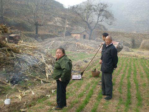 十月一 祭坟 海 whp626187的博客