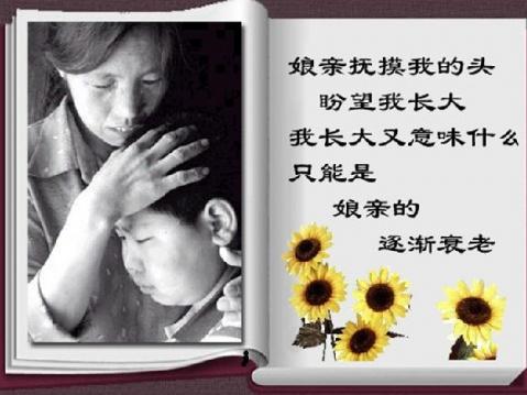 第一次听到阎维文唱《母亲》这首歌,是在回家的飞机上.