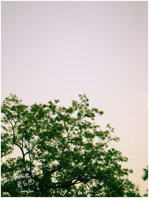 海边的房子是白色的 - zhemu - 柘木