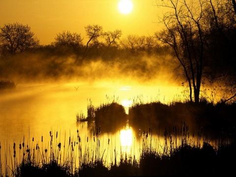 诗歌:夕阳醉  和文艺诗《黄昏》 - 草根二月 - 草根馨园