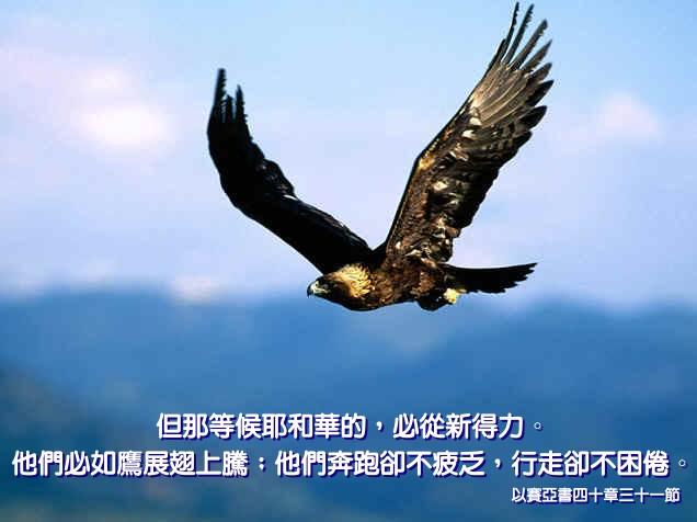 改变人生的40句圣经仅句 - 北京真道教会 -    北京真道教会博客
