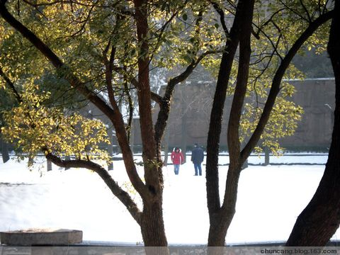 """【原创】东湖冰幻 - 春天灿烂 - """"春天灿烂""""的博客欢迎你!"""
