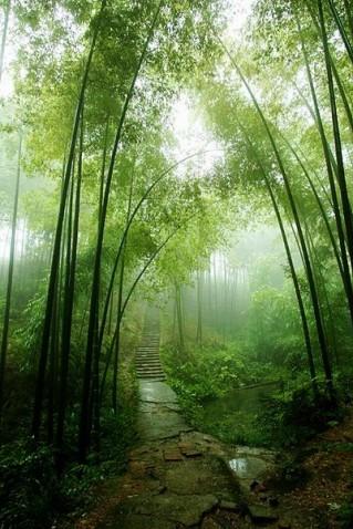 中国摄影 - 太空草原 - TAI KONG CAOYUAN太空草原