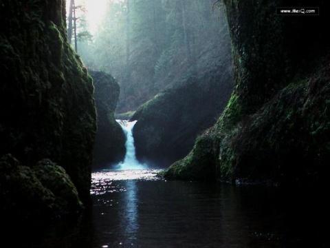 瀑布 - 阳光脚步 - 阳光下的精彩