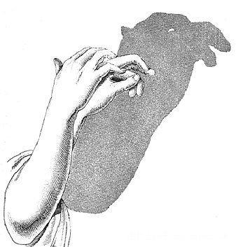 手影全集(很难找哦快转吧) - liushuangbin1 - 流星赶月