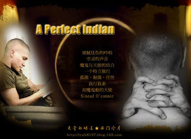 【异域经典】魔鬼般的天使细腻忧伤的吟唱 A Perfect Indian - 西门冷月 -                  .