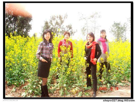 2009踏青 - 玫瑰叶子 - 雾山红叶