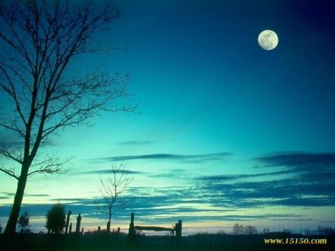 感受月光(原创) - 梦景红花 - 梦景红花的博客