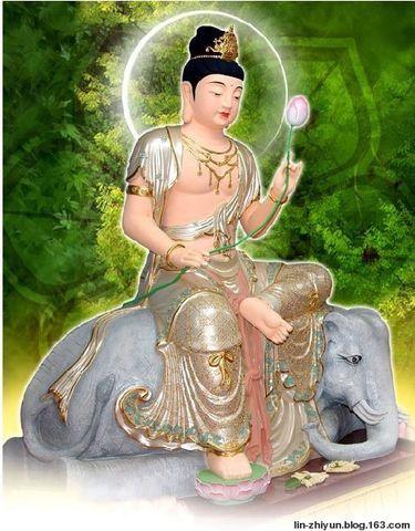 普賢菩薩 - 嗡嘛呢呗弥吽 - 我是佛身边的小沙弥的博客