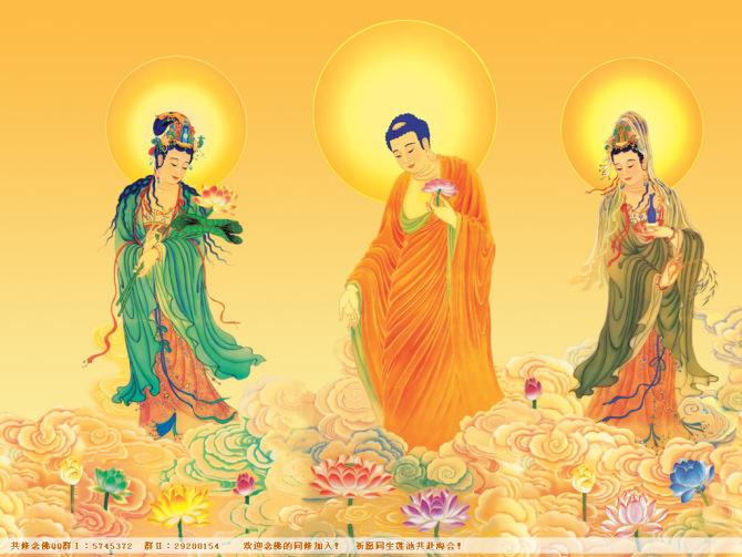三百七十七首佛教歌曲视频 - 1390102lj - 1390102lj 的博客
