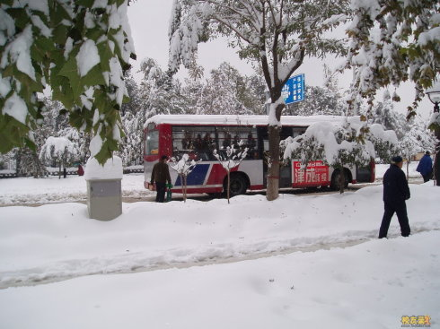 石家庄公交车惊魂12小时 - 9843237 - 9843237的博客