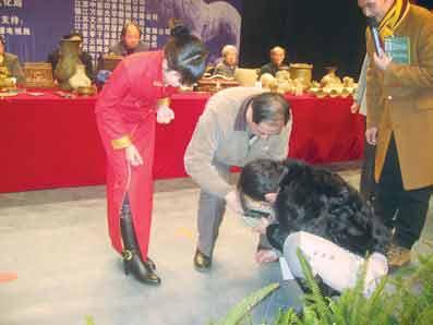 CCTV民间寻宝出意外 百万美元古镜被摔碎 - 新闻天地 - 湖南日报--华夏艺苑