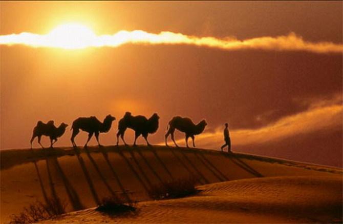 情寄沙漠 - 为谁向天乞怜哀 - 一梦千寻 的博客