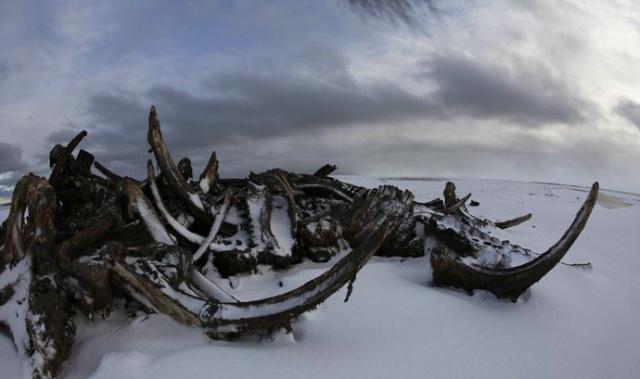 【谷岳刘畅美洲历险记】隐藏在阿拉斯加的鲸鱼墓地 - 行者 - 《行者》旅游卫视