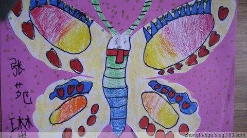 蝴蝶有对称而漂亮的花纹