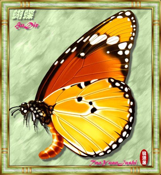 手绘蝴蝶图片欣赏(55P) - 桃源居士 - 桃源居
