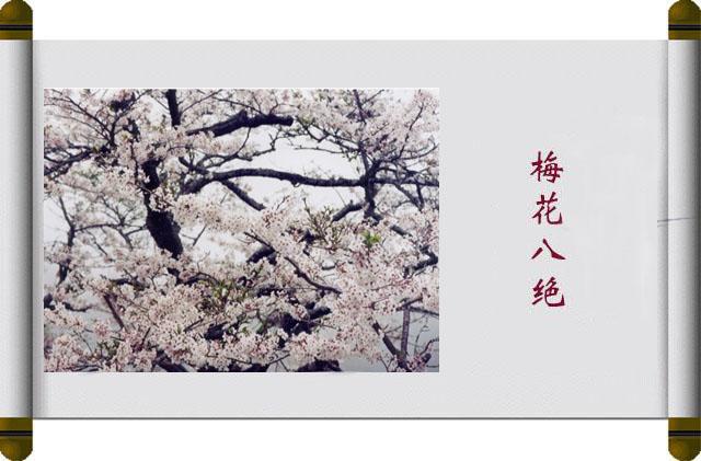 梅花八绝 - 彩霞满天 - 罗永霞
