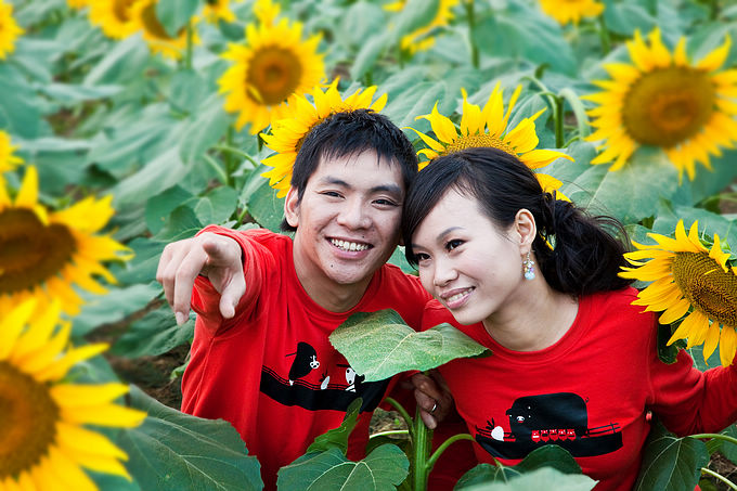 看亚运,游广州——百万葵园里的婚礼进行曲 - 牛筋 - 牛筋的博客