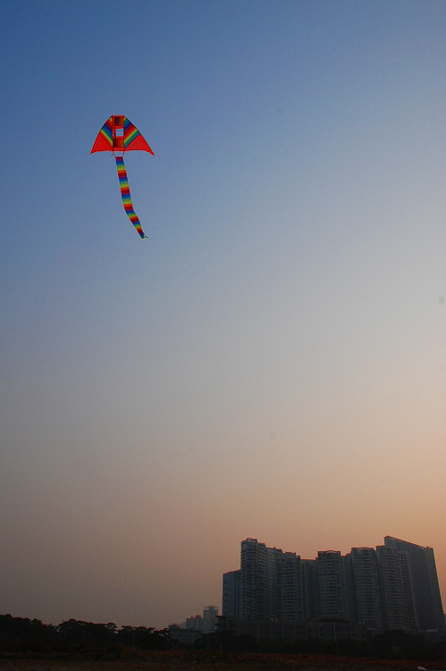 荒地上空的风筝 - mojostudio -           MOJOSTUDIO