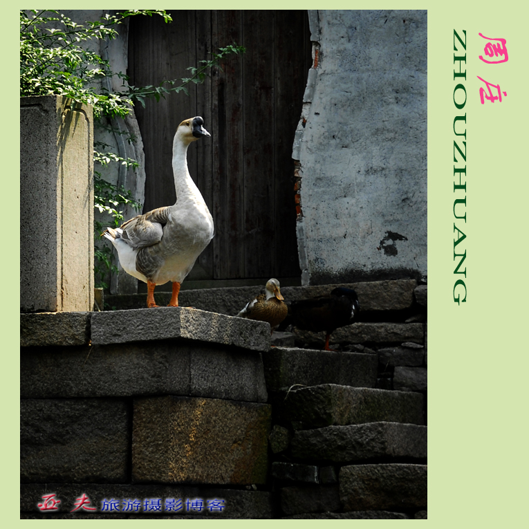 (原创)梦里水乡 - 高山长风 - 亚夫旅游摄影博客