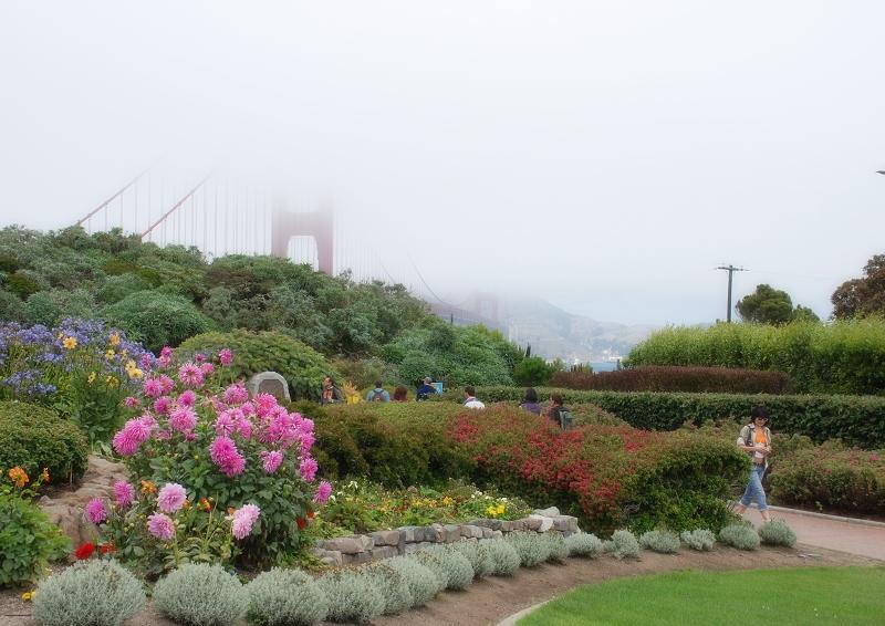 加州阳光___(二十四)金门大桥看风景 - 西樱 - 走马观景
