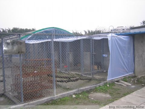 感谢亚洲动物基金为狗狗铺设防风膜 - 四川启明小动物保护中心 - 四川省启明小动物保护中心
