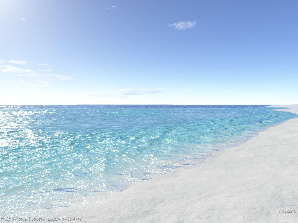 我在海里游泳,差一点与上帝接吻图片