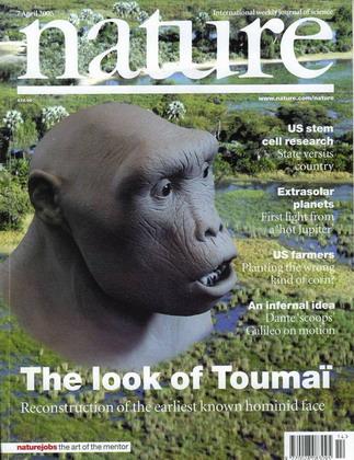 人类祖先的复原模型(图) - 潘石屹 - 潘石屹的博客