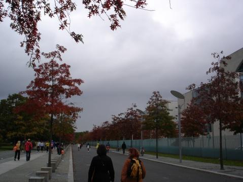 德国的红橡树 - pfspfs666.popo - 反三的博客
