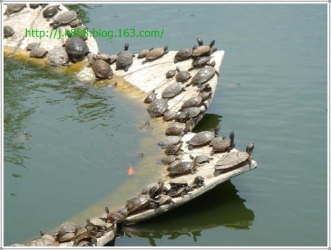 【原创图片】武汉(2006.06) - 珠峰 - 插上飞翔的翅膀