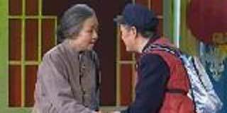 春晚让宋丹丹当了近20年的村妞 - lzz618368 - lzz618368的博客