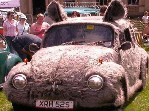 五鼠闹车市 鼠年最有鼠相的汽车 - zhangdaxian199 - 大仙的小屋