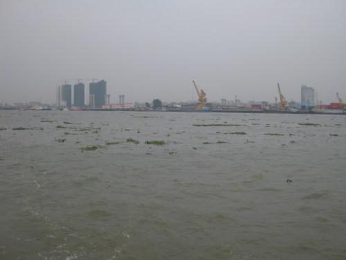 6月7日东莞沙田尼洲渡口:放生,大水鱼 - 阿德 - 深圳放生