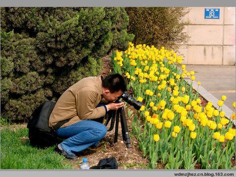 专心致志——练习摄影 - MOMO - MOMO的博客