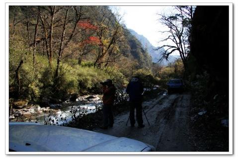 金秋之旅--大川黄水河 - 老爷车 - 老爷车的博客