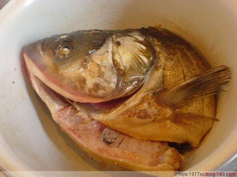 完美的旅程之鱼头豆腐汤 - *JJ* - 静静的等待
