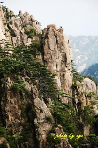 [原创]神州山水(03)黄山奇峰《》 - 自由诗 - 人文历史自然 诗词曲赋杂谈