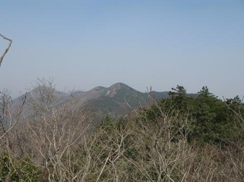 终于登上大雾山顶 - 江村一老头 - 江村一老头的茅草屋