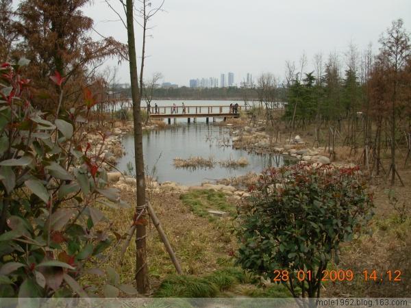 家乡的溪和溪上的桥 - mole1952 - mole1952的博客
