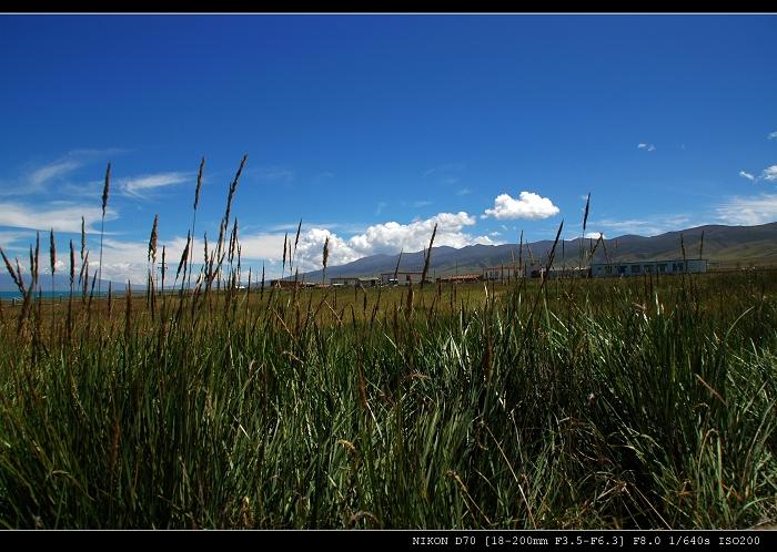 10、草原赞歌高清图片