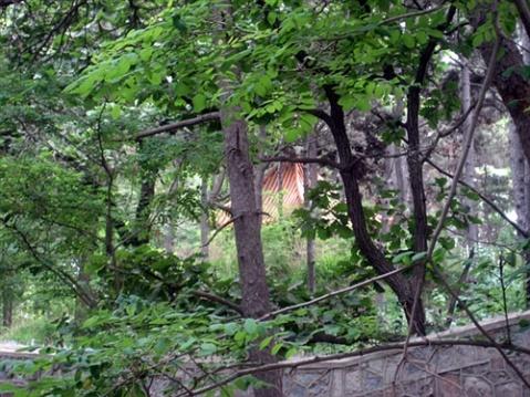 【转载】北戴河的96号神秘别墅【图】 - wtnian2010 - wtnian2010的博客武雁瀛