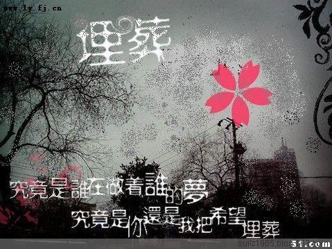 【龍】曲终人散 后会无期 - 随缘 - .